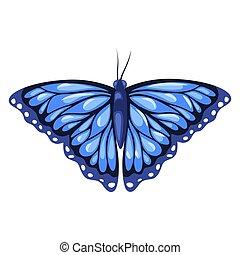 青, 蝶, 隔離された, 背景, 君主, 白
