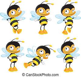 面白い, セット, 蜂