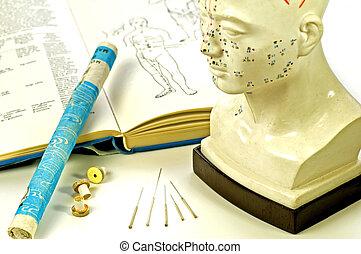 頭, moxa, 教科書, 刺鍼術, モデル, 針, 回転しなさい