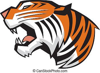 頭, tiger, ベクトル, 吠え声, サイド光景