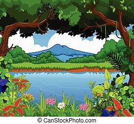 風景, 光景, 湖, 美しさ, bac