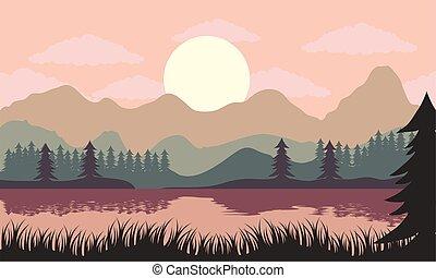 風景, 美しい, 湖, 現場, マツ, 木, 日没