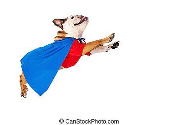 飛行, superhero, 犬