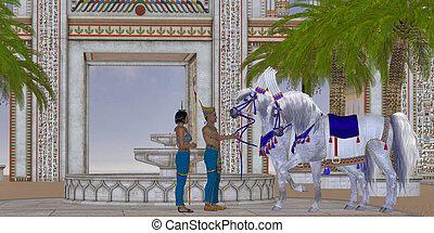 馬, エジプト人
