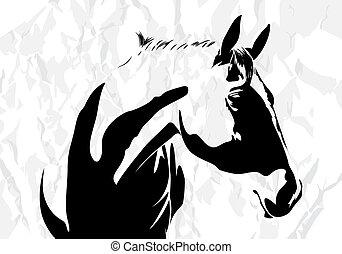 馬, ベクトル