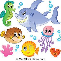 魚, 動物, 4, コレクション, 海