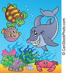 魚, 水中, 1, 動物