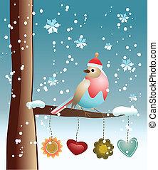 鳥, 背景, 冬