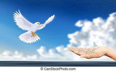 鳩, 平和である
