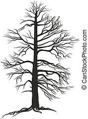 黒, 木, branchy, 定着する