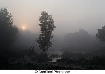 1, 霧が濃い, 朝