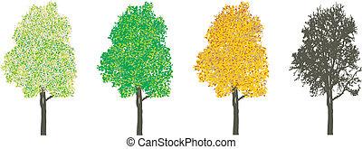 4つの季節, 木
