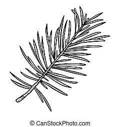 branch., 針, 彫版, 型, ベクトル, 白, 隔離された, 黒