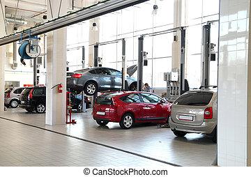 car-care, ワークショップ
