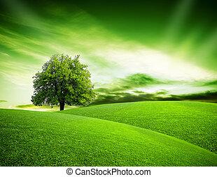 eco, 惑星, 緑