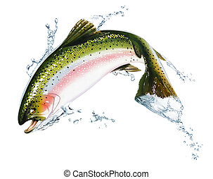 fish, いくつか, splashes., 跳躍, 水, から
