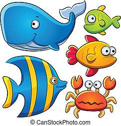 fish, 海, コレクション