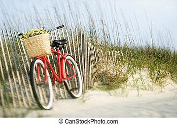 flowers., 自転車