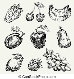 freehand, fruits., セット, 図画