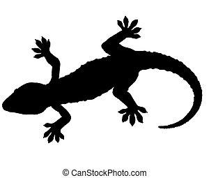 gecko, シルエット