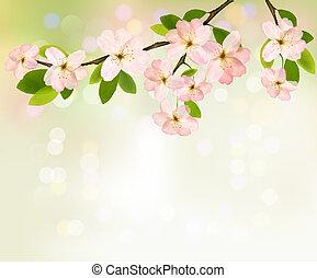 illustration., 春, 開くこと, 木, flowers., ベクトル, 背景, ブランチ