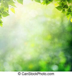 meadow., 夏, 自然, 抽象的, 背景, 奇跡, 日