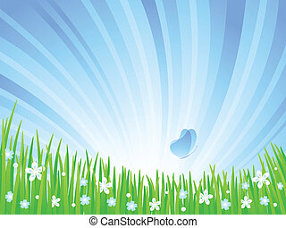 meadow., 春