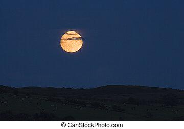moonrise, 曇らせている
