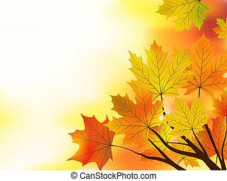 multi 有色人種, 葉, バックグラウンド。, 秋, かえで
