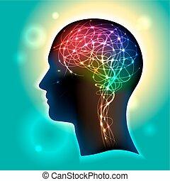 neurons, 脳