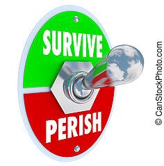 perish, 勝利, トグルスイッチ, ∥対∥, 選びなさい, 耐えなさい, 生き残りなさい, 態度