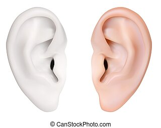 photo-realistic, ear., vector., 隔離された, 人間, 白