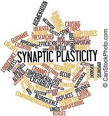 plasticity, synaptic