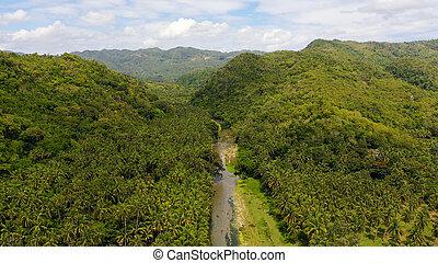 rainforest, leyte, 山の景色, ビュー。, フィリピン。, 島, 川, 航空写真, 山