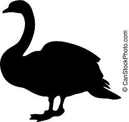 silhouette., 鳥, すてきである, ベクトル, 白鳥, 黒, 自然