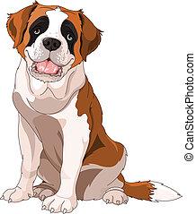 st. 。, 犬, bernard