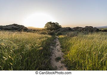 susana, 牧草地, 公園, 道, 州, 歴史的, santa, パス, 日の出