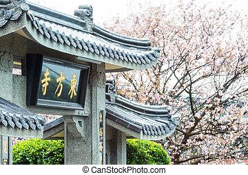 taipei, 花, さくらんぼ, 東洋人, 季節, 台湾, 寺院