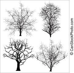 vectors, 死んだ木