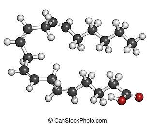 (white), omega-6, 色, (red), model., (aa, ara), 水素, 従来である, 酸, polyunsaturated, 酸, 分子, でぶ, arachidonic, 原子, coding:, (grey), 表された, 炭素, 酸素, 球