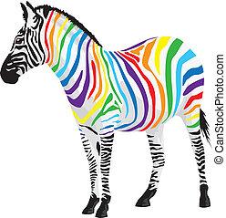 zebra., 別, ストリップ, colors.
